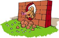 Schweinhund Mauer