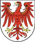 Dart Brandenburg